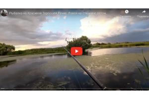 Рыбалка на Красивой Заросшей Речке. Ловля на спиннинг летом.